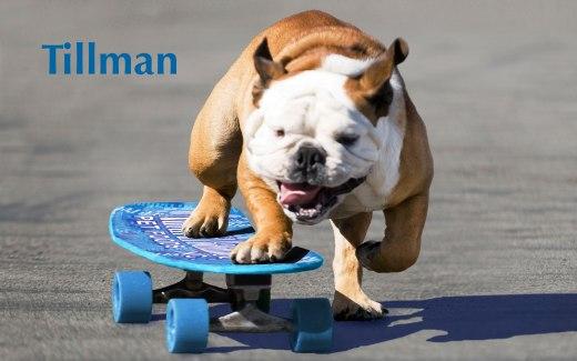 Tillman_Skateboard